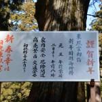 hatumoude_20160108_20