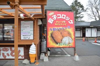 nikko-shuhen_06