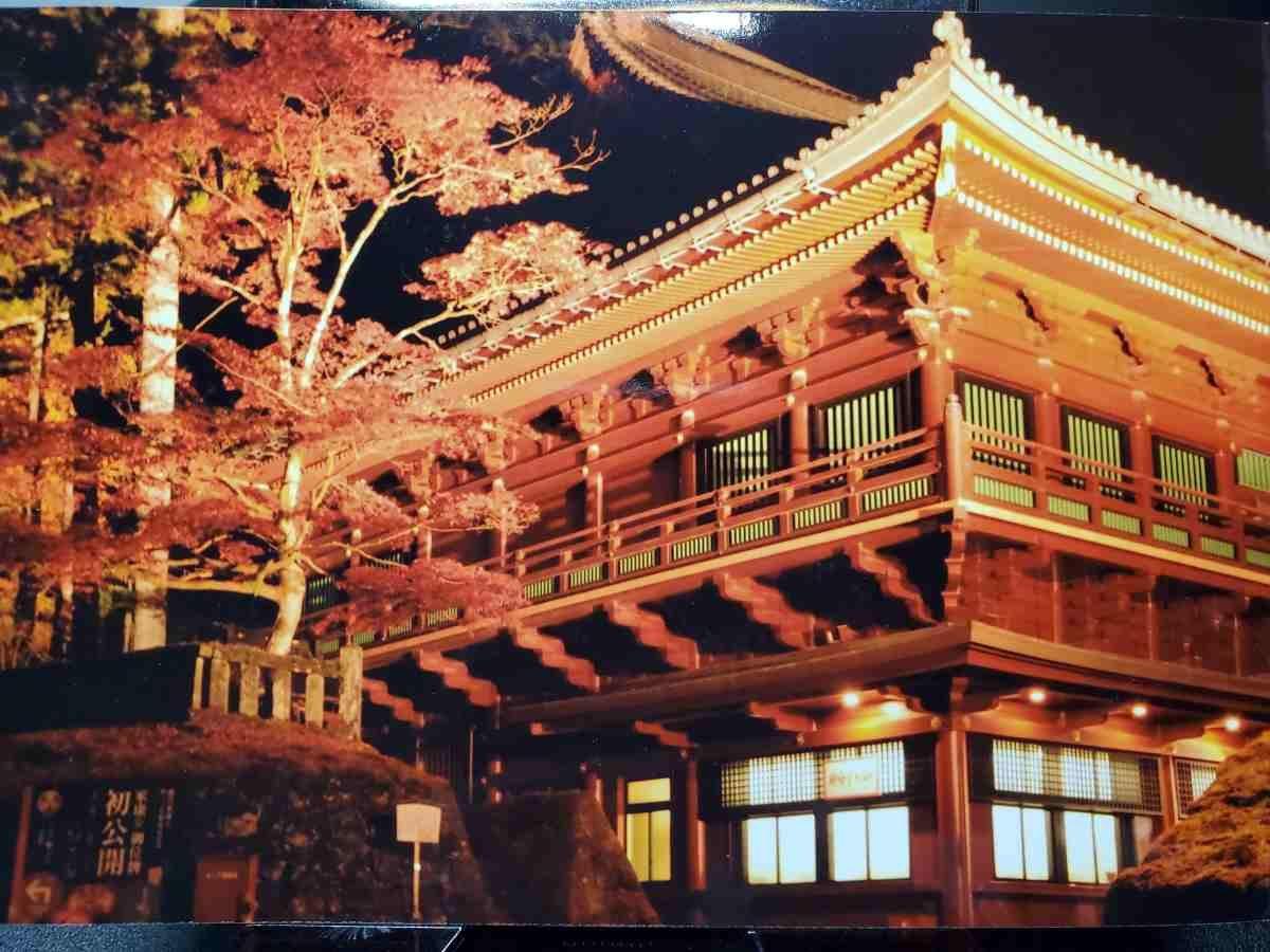 しろくまフォト-社寺(紅葉)